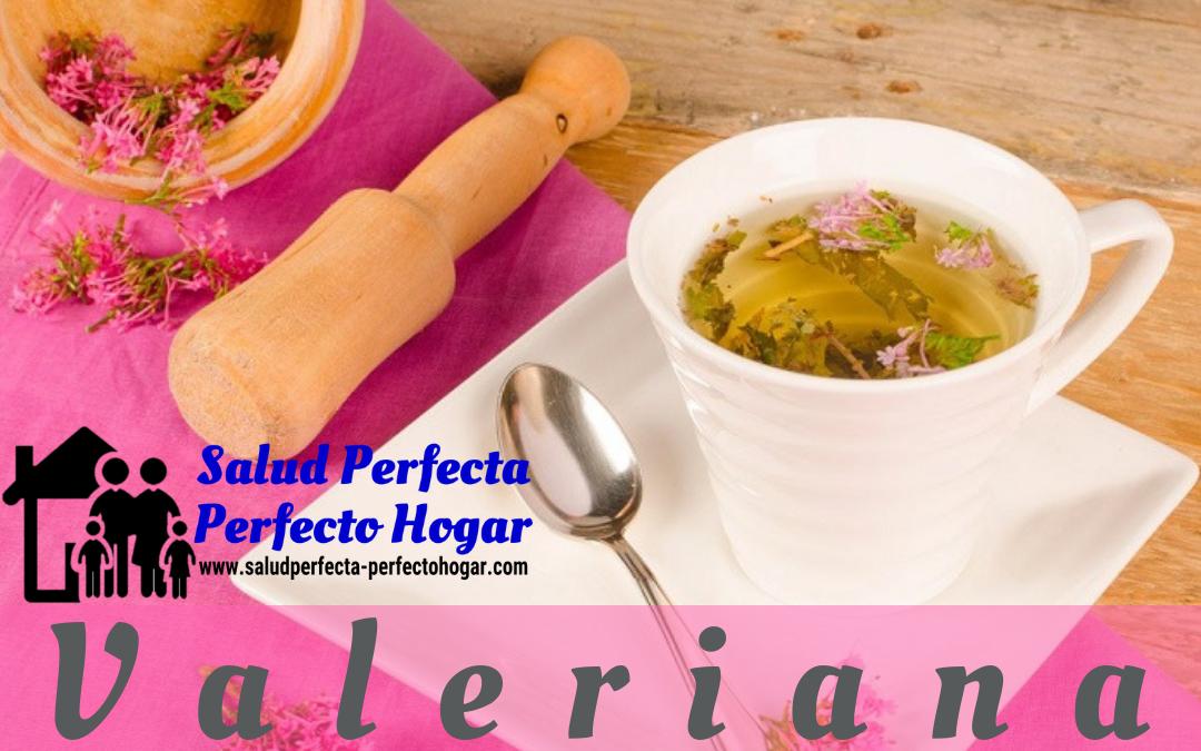 Remedios naturales para la depresión_ Valeriana - Salud Perfecta - Perfecto Hogar